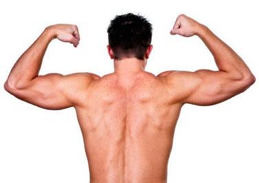 Наращивание мышц советы